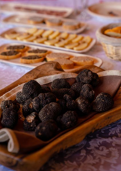 Day 4, Istrian Black Truffles found on a truffle hunt near Motovun