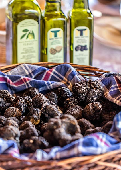 enjoy a meal made of Istrian truffles accompanied by best istrian olive oil at Kotiga family estate